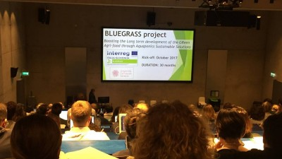 Bluegrass at the Aquaponics HUB cost meeting in Greenwich, April 2018